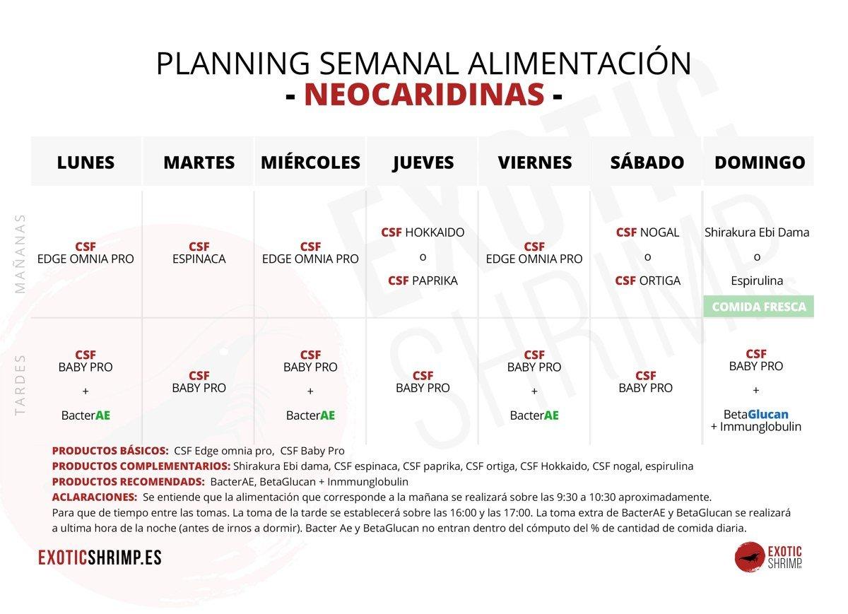 plantilla planing semanal neocaridinas exotic-shrimp