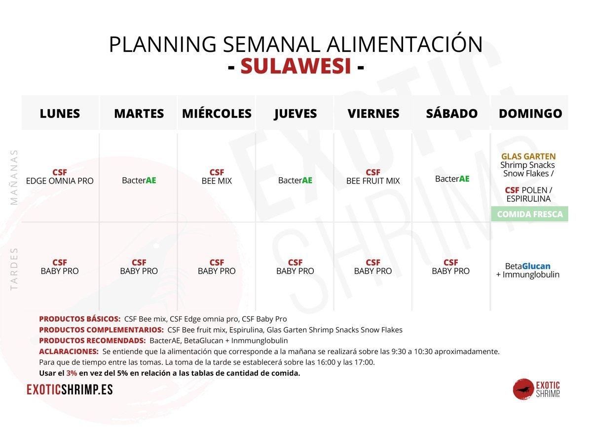 plantilla planing semanal sulawesi