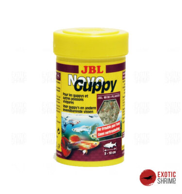 JBL NovoGuppy exotic shrimp imag destacada