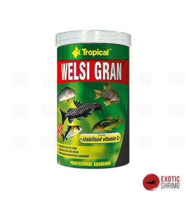 TROPICAL WELSI GRAN exotic shrimp imag destacada