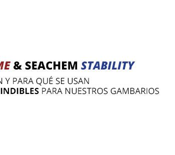 seachem prime stability exotic shrimp imagen destacada