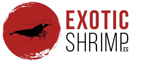 Exotic-Shrimp